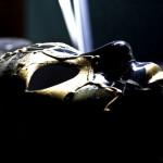 Zdejmujemy maskę: chrześcijanie czy pomazańcowi?