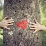 Uprawiają seks z… drzewami